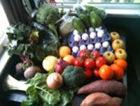 FarmersMarketSpread (2)